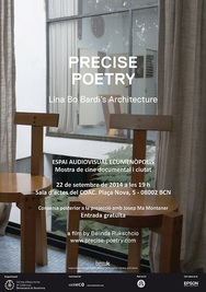 Precise Poetry (Poster)